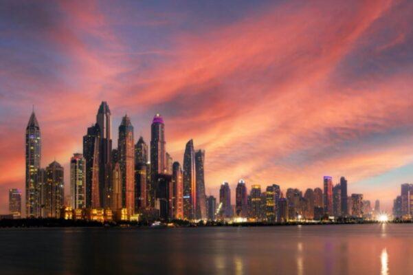 Best Watch Winder Dubai